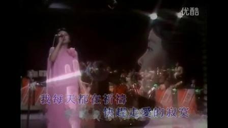 邓丽君 - 金曲二十年
