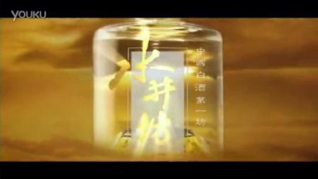 酒    类 - 水井坊(风云篇) - 30s