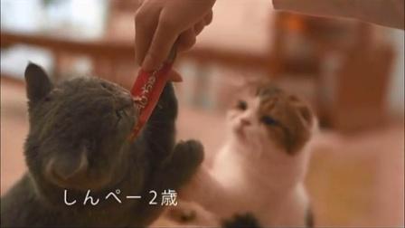 2015-5-5 妙好 啾噜--日本广告片