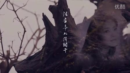 【MV】王菲 邓丽君 - 清平调(抢先版)