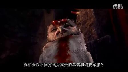 科学:猫头鹰王国