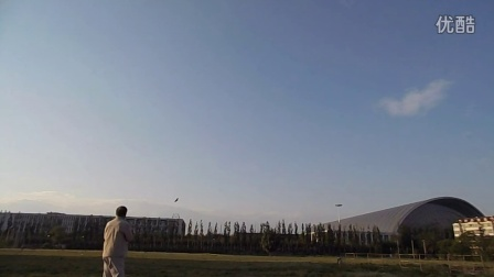 盘鹰天津飞龙放1.1米蝠