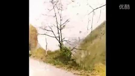 苗族电影,hmong