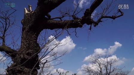 纪录片《气候 家园》预告片