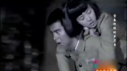 青春燃烧的岁月08 军旅电视剧 标清版
