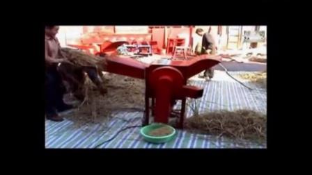 自主研发豆类脱粒机 五谷杂粮脱粒机 小麦脱粒机 黄豆脱粒机
