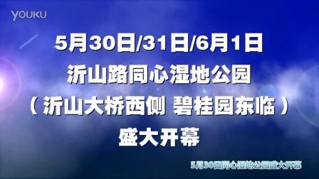 """阳光保险2015""""文明交通 安全出行""""公益年活动宣传视频"""