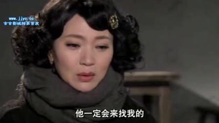 芙蓉锦04