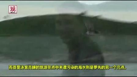 【观察者网&朝鲜音乐网】朝鲜经济特区招商宣传片