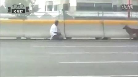 [K分享] 可敬!女子冒生命危险高速路救狗狗