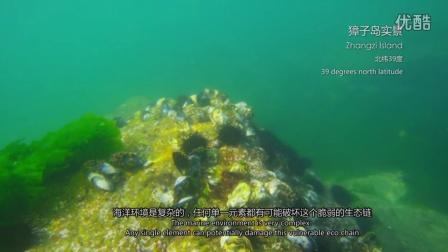 《耕海系列-取之有道篇》-獐子岛海洋纪录片