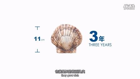 《耕海系列-海洋牧场篇》-獐子岛海洋纪录片