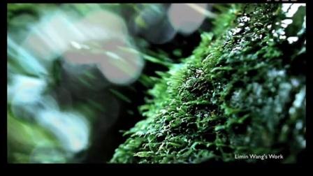 玉溪香烟形象片-水篇