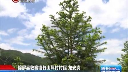 """龙安炎:半溪山上有我的""""绿色梦想"""" 贵州新闻联播 150617"""