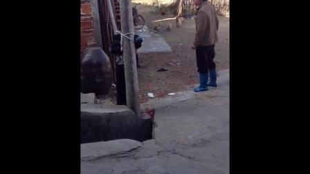 [拍客]小男孩被绑在电线杆上暴打_标清