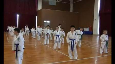 上海垚磊正统跆拳道《许昌虎师贤讲跆拳道基本腿法》