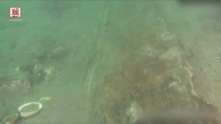 【观察者网】日本长崎近海发现元朝军队攻日沉船