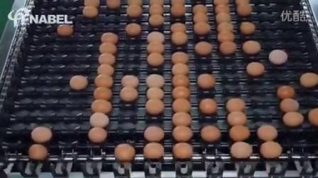 【NABEL】自动蛋品分级包装系统≪80,000eggs/hr≫(CANOPUS8000)
