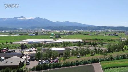 北海道 观光 – 富良野 富田农场 4