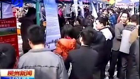 桂聘柳州人才网3月24日招聘会- 柳州新闻