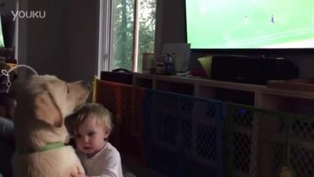 【发现最热视频】爱看球赛的狗狗!什么也不能让他动摇idcool.com.cn