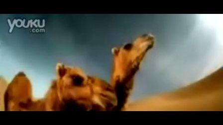 福特汽车视频广告:沙漠高尔夫玩过吗?