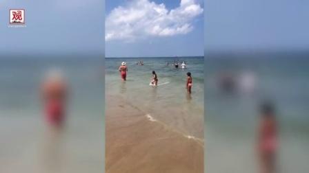 """【观察者网】美国夫妇带着自制""""防鲨鱼笼""""就准备下海了~"""
