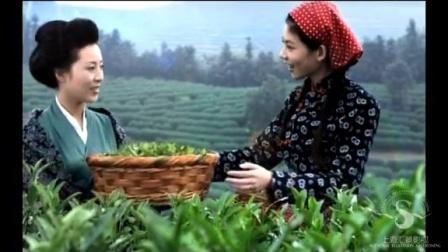 中粮集团-中国茶业 亮相篇