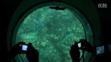 韩国游乘潜艇海底游览 2014919