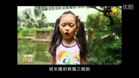 广东少儿小嘉宾长隆熊猫三胞胎生日祝福
