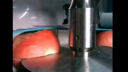Food超声波焊接