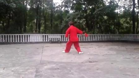49式武当太极剑全套动作   朱玲演示