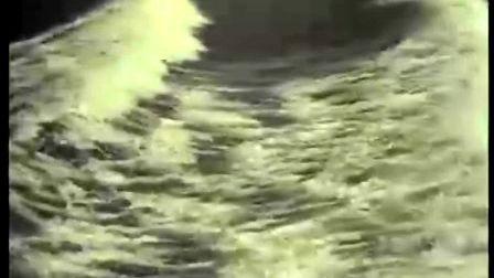 敬爱的毛——1976故事片《青春似火》插曲(朱逢博演唱)