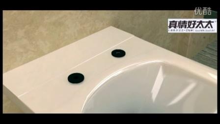 真情好太太智能坐便器3D安装视频