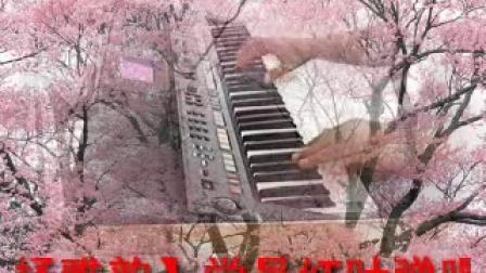 S650电子琴弹唱【今世有缘】