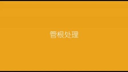 西卡厨卫阴阳角与管根施工视频