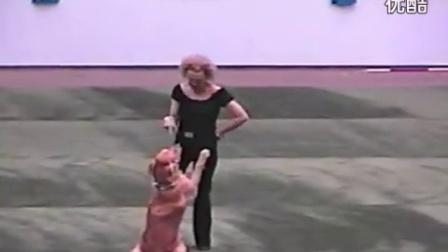 【藤缠楼】搞笑动物!聪明狗狗与女主人共舞_标
