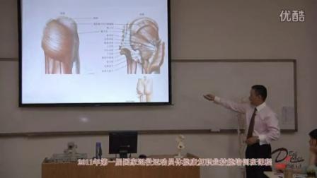 《髋关节的功能解剖》直立时髋关节处力的走向