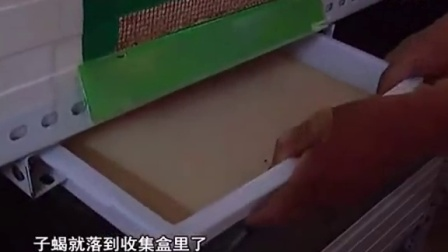 2015致富金点子特种养殖之特种养殖蝎子技术视频