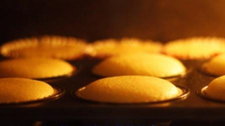 海绵纸杯蛋糕胚