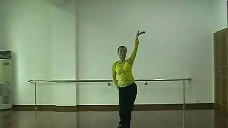 现代舞舞蹈视频大全 傣族舞蹈_彩云之南_标清
