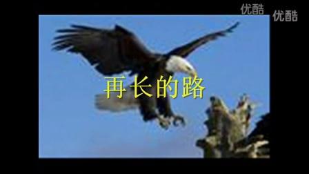 《励志故事》雄鹰展翅    翱翔
