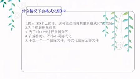 上海闵行区数码相机SD卡格式化了怎么恢复天盾数据恢复中心