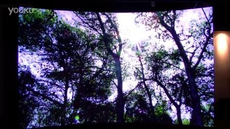 破霾之光——用vofrid沉浸式、全视景、弧形大屏看视频