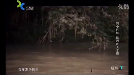 河中巨怪 欧洲吃人水怪[高清版]
