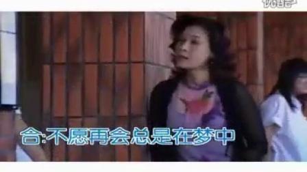 20.再见阿郎-主题曲-阿郎-龙千玉、袁小迪演唱(闽南语)