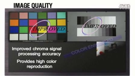 Nextchip CCD Image Signal Processor , Hawk II