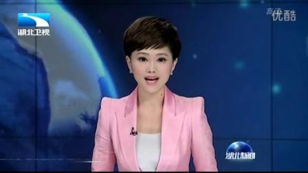 湖北凯欣环保科技有限公司(湖北卫视新闻)--全高清格式 [中质量和大小]