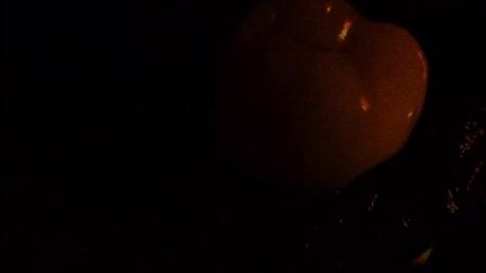 口腔静物摄影,如果没有闪光灯