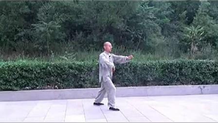 精品 正宗杨式太极拳85式教学(精讲五) 永年李占英 2012年新版